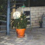 43) An Ethereal orb that lights up the potted plant.