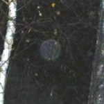 9c) Close up of the orb.